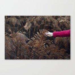 Autumn feel Canvas Print
