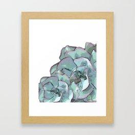 Succulent N.2 Framed Art Print