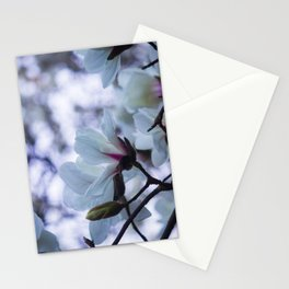 Bokeh Magnolias Stationery Cards