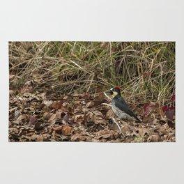 Acorn Woodpecker Rug