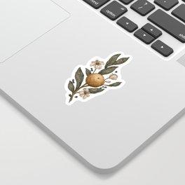 Clementine Sticker