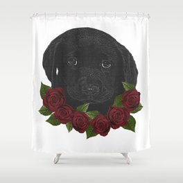 Baby labrador and roses, baby dog Shower Curtain