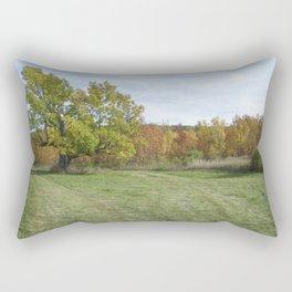 John A. Hutter Memorial Park Rectangular Pillow