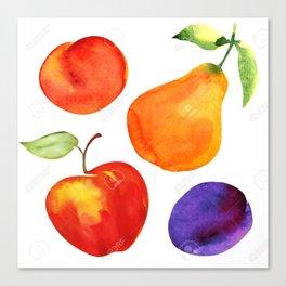 beautiful fruit Canvas Print