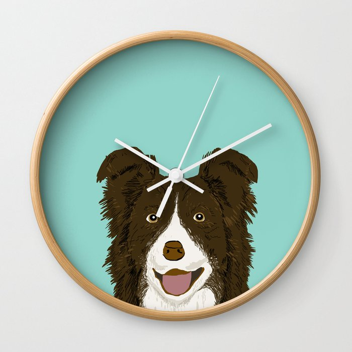Border Collie Chocolate Brown Cute Working Dog Breed Herding Dogs