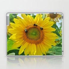 Three Bees Laptop & iPad Skin