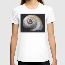 Moon snail sea shell 2863 T-shirt