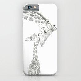 Reticulated Giraffes, Camelopardis Reticulata iPhone Case