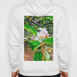 Apple blossom Hoody