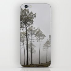 Dream forests. Triptych iPhone & iPod Skin
