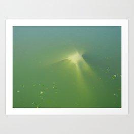 Underwater Tarp Art Print