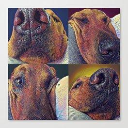 Squishy Face Canvas Print