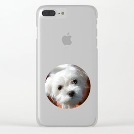 Cute Maltese asking for a treat Clear iPhone Case