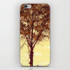 Sunny Tree iPhone & iPod Skin