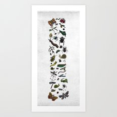 letter I - insects Art Print