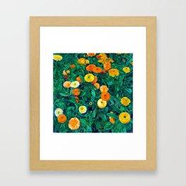Koloman Moser Marigolds Framed Art Print