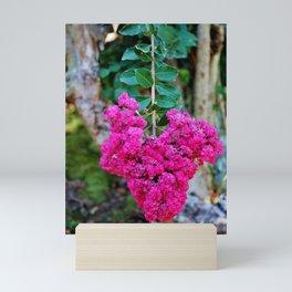 Heart Shaped Crape Myrtle Flowers Mini Art Print