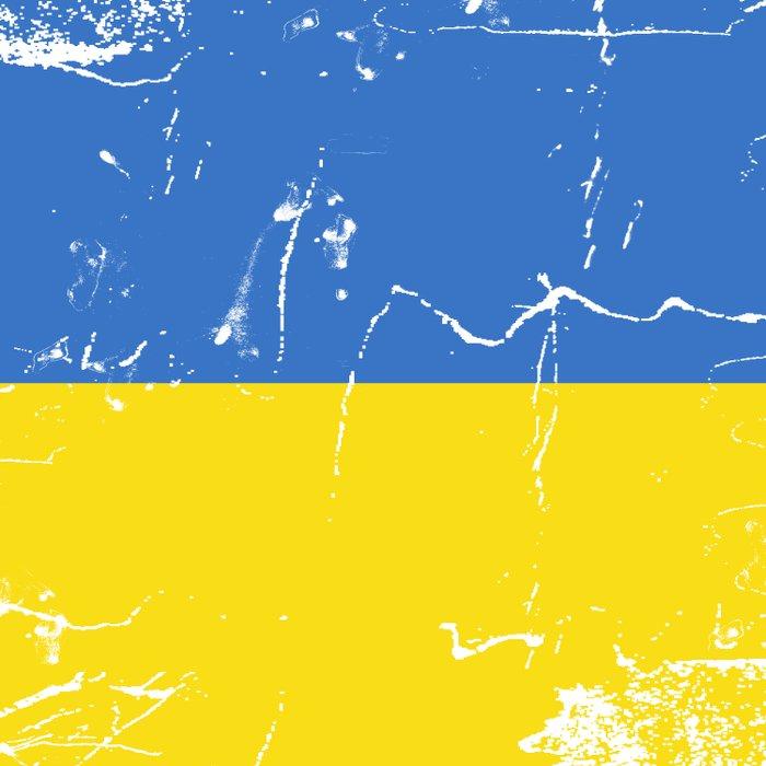 Ukraine flag Comforters