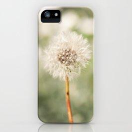 Delicate Dandelion Seedhead iPhone Case