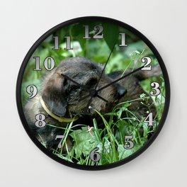 Dachshund Doxie Wall Clock