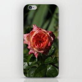 Floral ice cream iPhone Skin