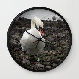 Swans Wall Clock