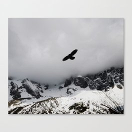 Black Over Grey Over White Canvas Print