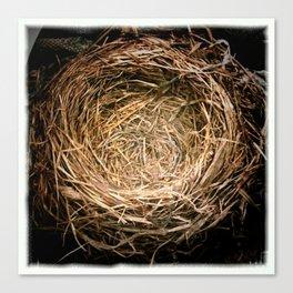 a handmade nest Canvas Print