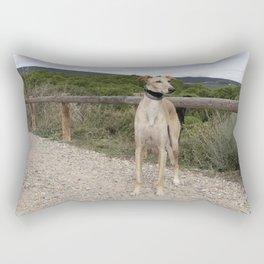greenhous Rectangular Pillow