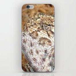 Chameleon - Macro Portrait iPhone Skin