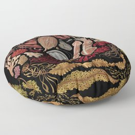 Intertidal Life of the North Atlantic (with species list) Floor Pillow