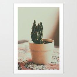 Coffee Shop Cactus Art Print