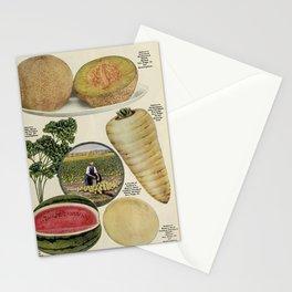 Seed Catalog Garden Floral Fruit Muskmelon Watermelon Parsnip Stationery Cards