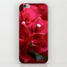 Red! iPhone & iPod Skin