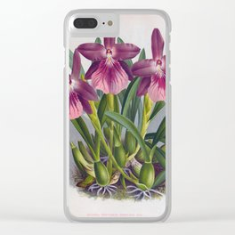 Vintage Purple Lady Orchids Miltonia Spectabilis Moreliana Clear iPhone Case