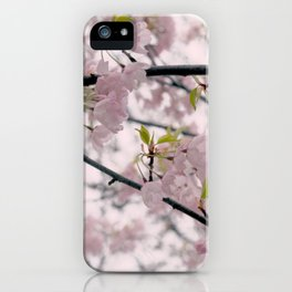 Dreamy Cherry Blossoms iPhone Case