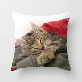 Cutest Cat Throw Pillow