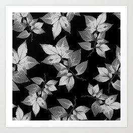 Elegant Leaves Art Print
