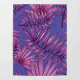 Summer Night Ferns Poster