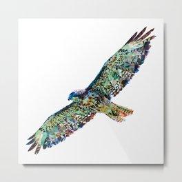 Falcon art Metal Print