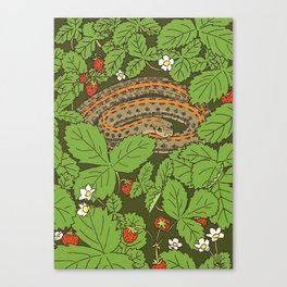 Snake & Strawberries Canvas Print
