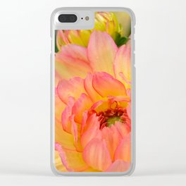 """""""Coral Tipped"""" Dahlia by Teresa Thompson Clear iPhone Case"""