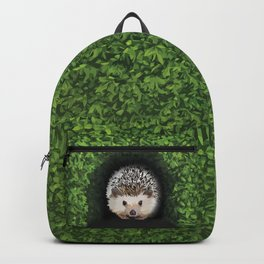 Little Hedgehog in the Hedge Backpack