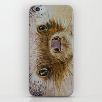 hedgehog iPhone & iPod Skins featuring Hedgehog by Michael Creese