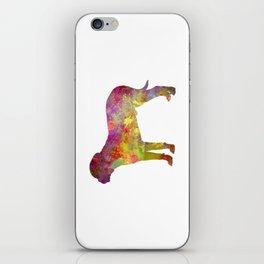 Bullmastiff in watercolor iPhone Skin