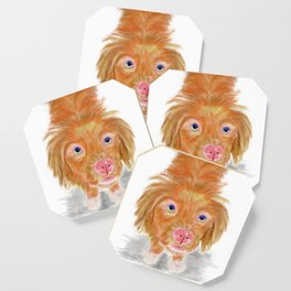 Jackson The Nova Scotia Duck Tolling Retriever Coaster