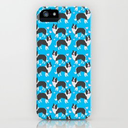 Border collie dogs pattern on blue iPhone Case