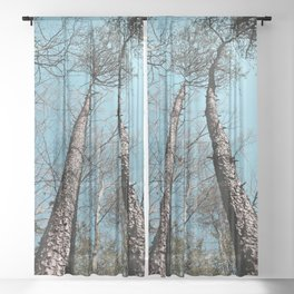 Twin Towers Sheer Curtain