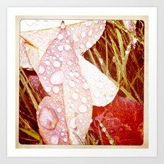 Droppin' Into Fall Art Print