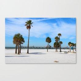 A Florida Winterday Canvas Print